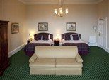 Junior Suite with Double Double Beds_154x114